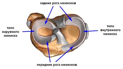 новая стать о височно нижне челюстной сустав